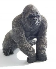 Are unmet needs your invisible gorilla